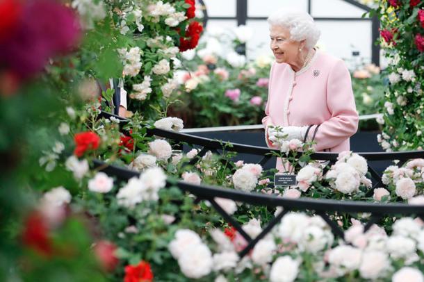 В Челси завершилась ежегодная выставка цветов Chelsea Flower Show