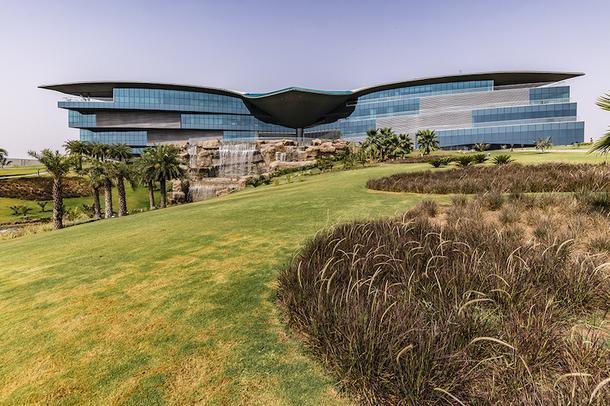 Здание стоит на холме и действительно напоминает застывшую в полете птицу.
