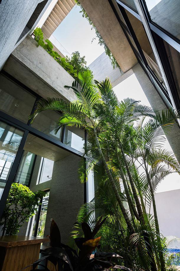 В гармонии с природой: 8 проектов с живыми растениями