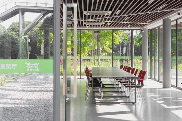 Библиотека в парке Шэньчжэня
