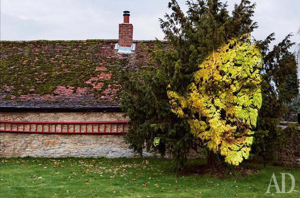 Ферма Old Belchers вграфстве Оксфордшир существует сXVII века. Надереве видеоинсталляция TheInfluence Machine американца Тони Оуслера, которая включается, когда кто-то проходит мимо датчика движения.