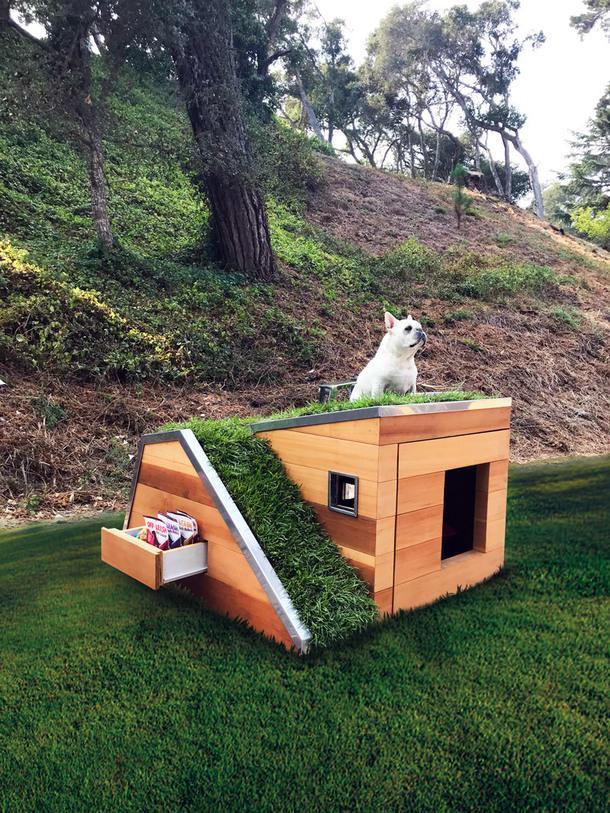 Современная будка для собак